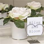see our BLOOMS range 2011