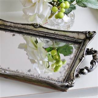 £17.99<br /><a href='/home-accessories/trays/elegant-silver-tray' target='' title=''>for more details</a>