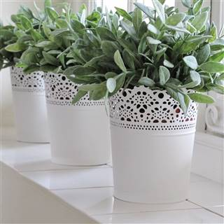 £5.99<br /><a href='/home-accessories/vases-and-planters/white-metal-planter-french-style' target='' title=''>for more details</a>