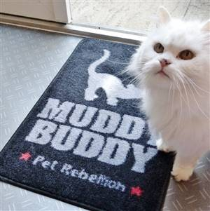 Cat Muddy Buddy Mat Rug